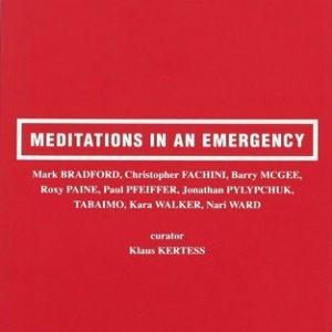 meditationsinanemergency